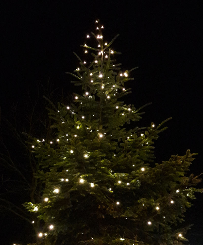 2016-11-26-weihnachtsbaum-gemeindeplatz
